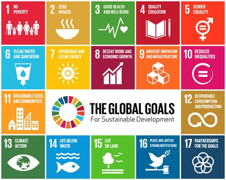 "Schaubild ""The Global Goals"""
